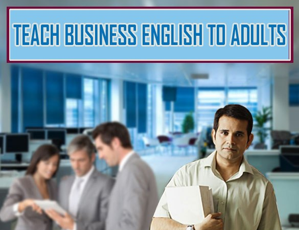 Teach Business English to adults